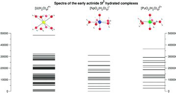 a hydration sphere effects of the hydration sphere and the bulk solvent