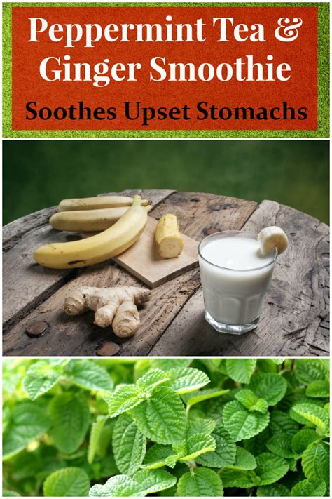 Carb Detox Diarrhea by Upset Stomach Soothing Smoothie All Nutribullet Recipes