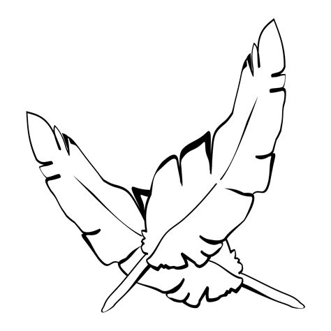 Coloring Pages Various Free Downloads Feather Coloring Pages