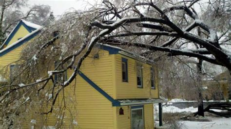 my neighbor s tree fell my neighbor s tree fell on my house who s responsible angie s list