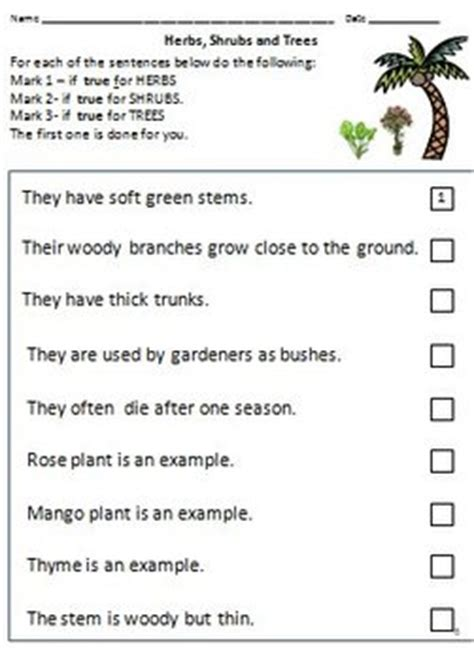 trees reading quiz for kids plant types climbers creepers herbs shrubs and trees by rituparna reddi