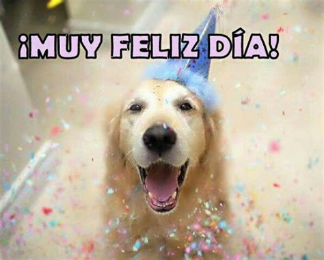 imagenes de happy birthday con perros dia del perro fe pinterest happy birthday