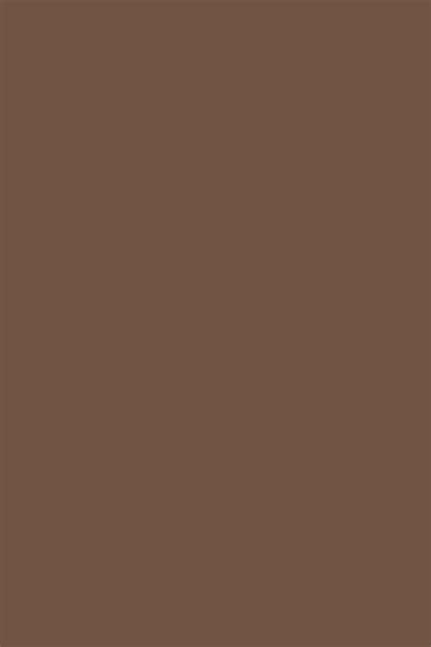 colors of brown brown paints interiors by color