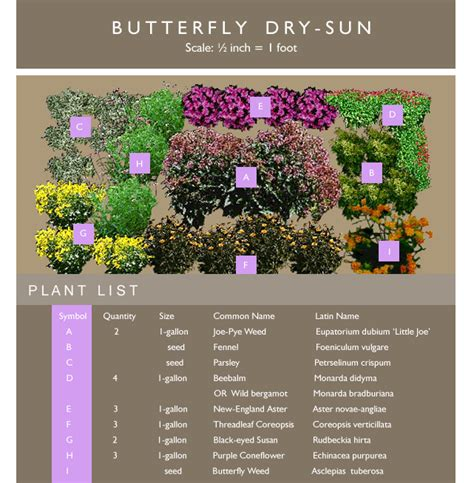 How To Create A School Garden Montgomery County Public Butterfly Garden Layout
