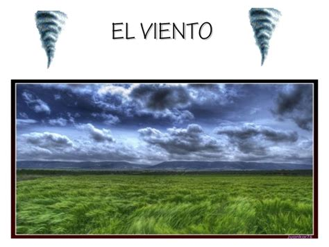 el viento en los el viento