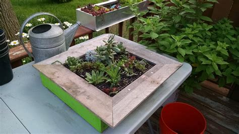 How To Make A Vertical Garden Frame How To Build A Vertical Succulent Garden