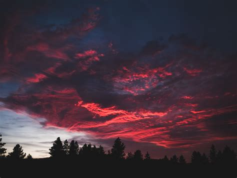 desktop wallpaper colorful clouds sunset dark tree hd