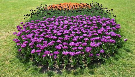 giardino sigurtà prezzi tulipanomania al parco giardino sigurt 224 fino al 30 aprile