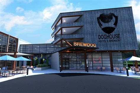 brew dogs columbus brewdog uk scottish craft company