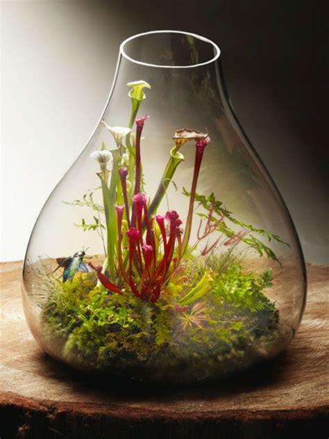 ueber  vorschlaege wie sie ein terrarium selber bauen