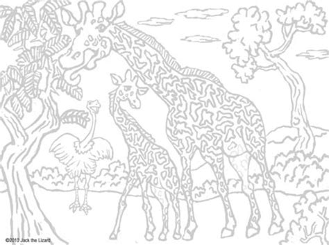 coloring pages animals hard hard animal coloring pages timeless miracle com