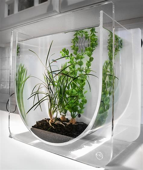 modern aquarium cool fish tanks modern funtrublog awesome aquariums 5