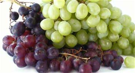imagenes uvas canal sur las uvas frutas alimentos canal nutrici 243 n dietas net