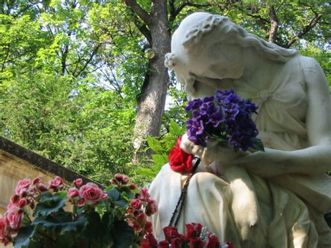 frasi consolazione morte frasi di condoglianze ad un amica per la morte figlio