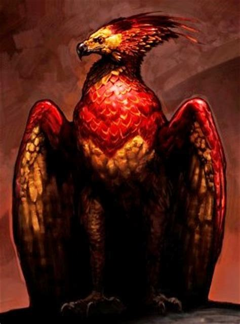 the real fawkes books fawkes harry potter wiki fandom powered by wikia