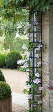 hide the downspout by building a trellis around gardening