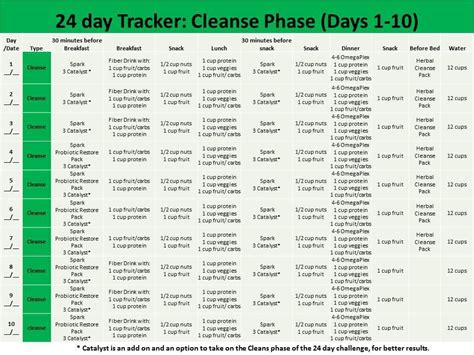 Prep Phase Detox System by A How To During The Cleanse Phase Clean