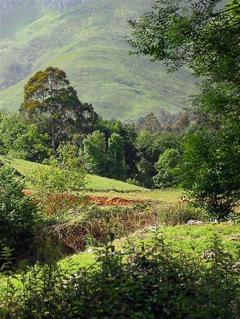 imagenes paisajes cos verdes paisajes verdes taringa