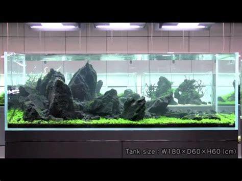 aquascape takashi amano takashi amano beautiful iwagumi style aquascape youtube fish tank pinterest