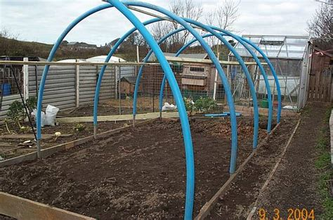 Shed Greenhouse Plans Polytunnel Vs Greenhouse In Equipment Shed Page 1 Of 1