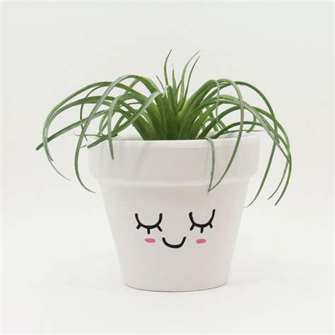 cute planters terracotta pot succulent planter cute face planter small