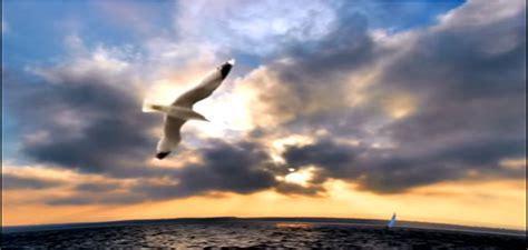 imagenes experiencia espiritual hermosa experiencia espiritual de nuestro hermano sergio