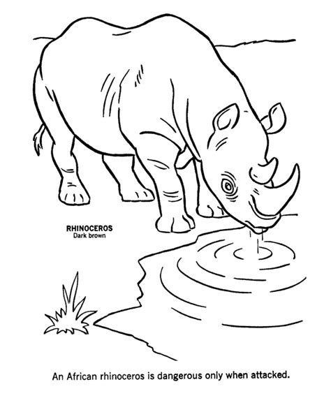 coloring pages wildlife animals coloring pages of wild animals coloring home