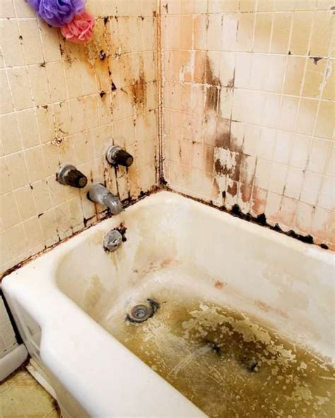 dirty bathtubs making bathrooms safe against mold and mildew beauty