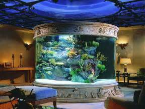 home accessories fish tank decor ideas unique fish tanks