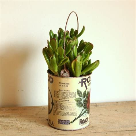Milk Can Planter by Succelent Hanging Planter In Retro Evaporated Milk Can