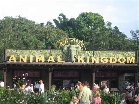 imagenes disney animal kingdom animal kingdom