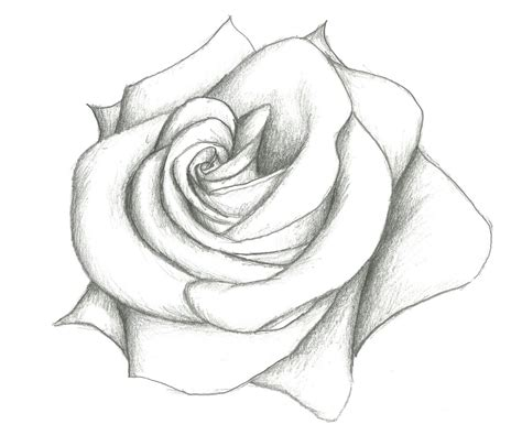slice and smudge tattoo drawings flowers drawing drawings inspiration