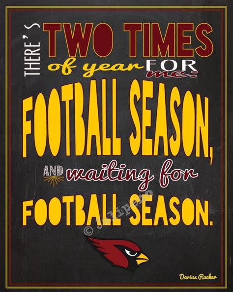 soaring on the cardinal house books the 25 best cardinals football ideas on