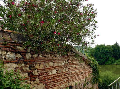 Granges Sur Lot by Photo 224 Granges Sur Lot 47260 Joli Mur De Briques