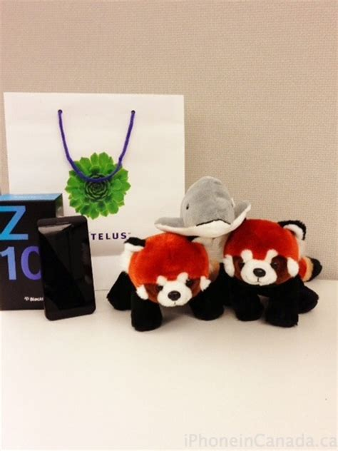 Iphone Official Giveaway Today - the best iphone giveaway ever win a telus blackberry z10 update iphone in