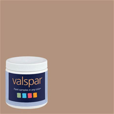 shop valspar 8 oz paint sle taupe 5 at lowes