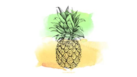 pineapple wallpaper pinterest free download bonus pineapple desktop wallpaper