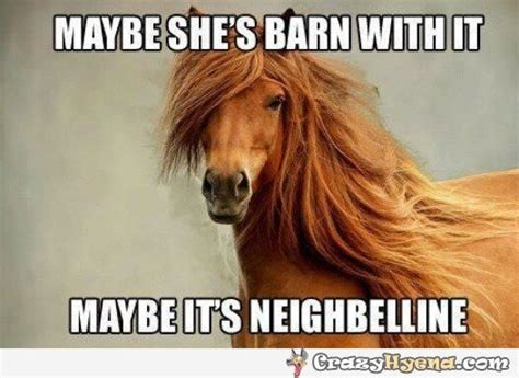 20 funny horse memes for equine lovers sayingimages com