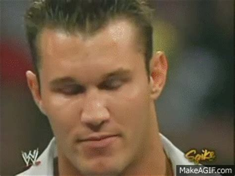 randy orton haircut randy orton gifs find share on giphy