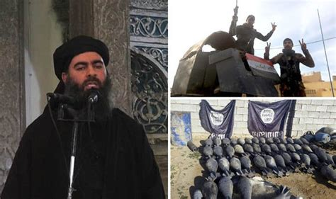 abu bakr al baghdadi isil leader still hiding in northern iraq city of mosul