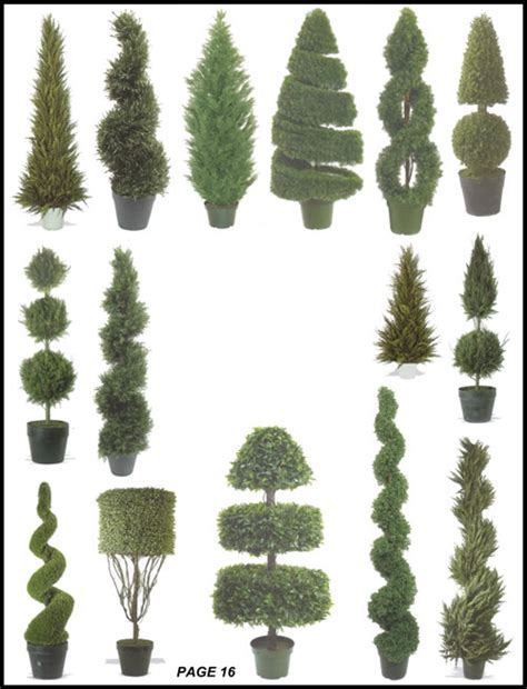 silk tree warehouse cedar pine cypress boxwood