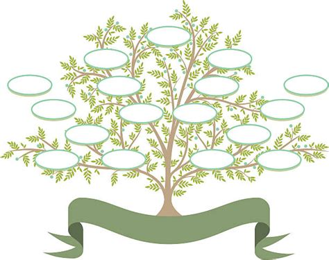 Royalty Free Family Tree Clip Art Vector Images Illustrations Istock Royalty Free Family Tree Clip Vector Images Illustrations Istock