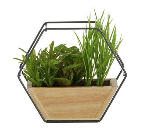 buy sainsburys home botanist faux terrarium artificial