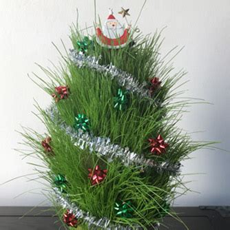 how to make a mini christmas tree eco organic garden by ocp