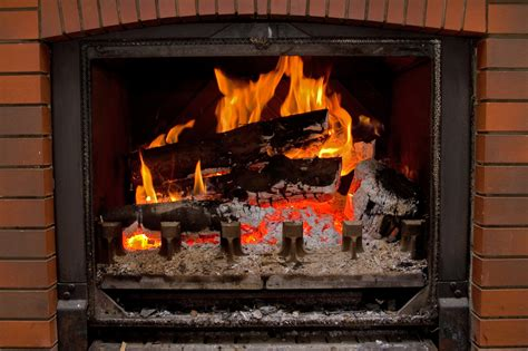 keeping your fireplace pest free during the winter