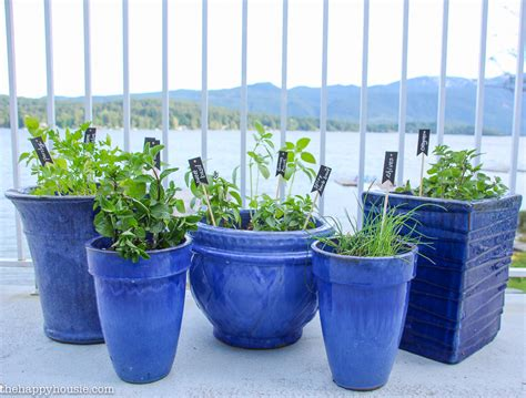 kitchen herb pots how to protect your outdoor cushions the happy housie