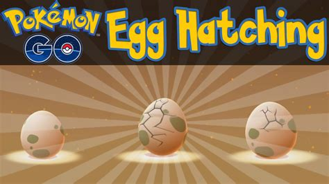 Go Egg go how to hatch eggs go ios android