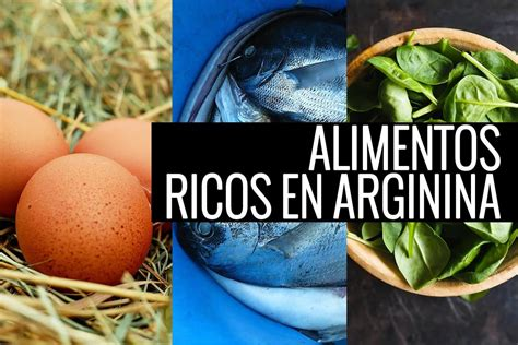 los  mejores alimentos ricos en arginina fullmusculocom