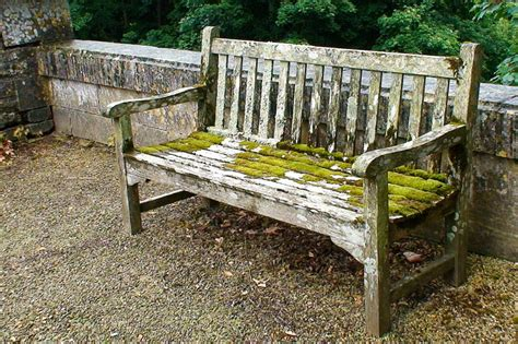 bench definition definition bench 28 images garden bench photo picture