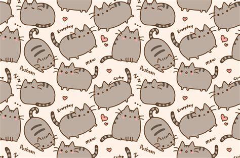 wallpaper tumblr cat meow cat wallpaper tumblr